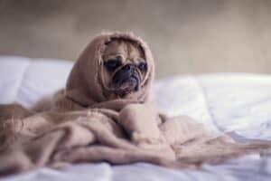 Slaapproblemen negatieve gedachten