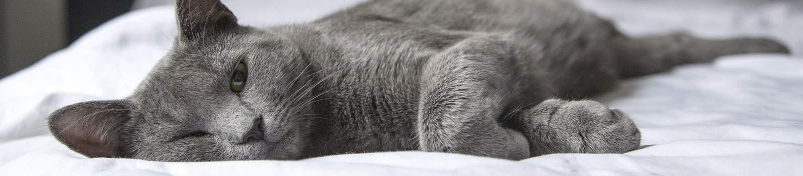 (Tip) Slecht slapen tegengaan? Maak het probleem niet erger!