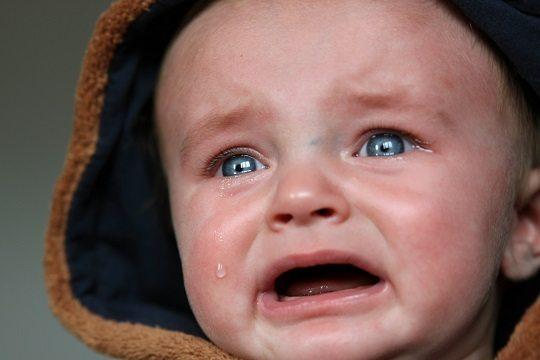 empatisch huilen