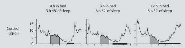 Cortisol tijdens slaap